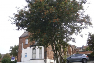 Top Floor Flat, 38 Belle Vue Road